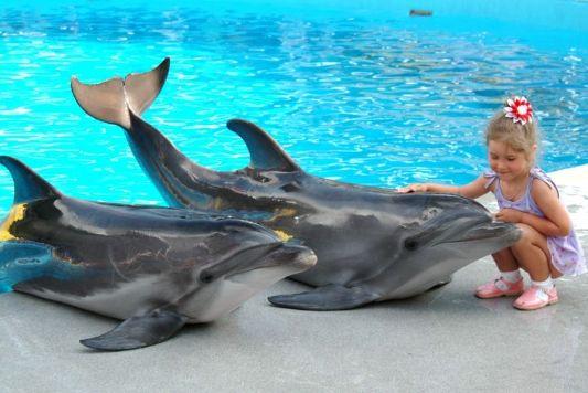 delfinarii-v-kemere-foto.jpg